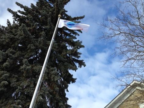 westports-own-sesquicentennial-flag