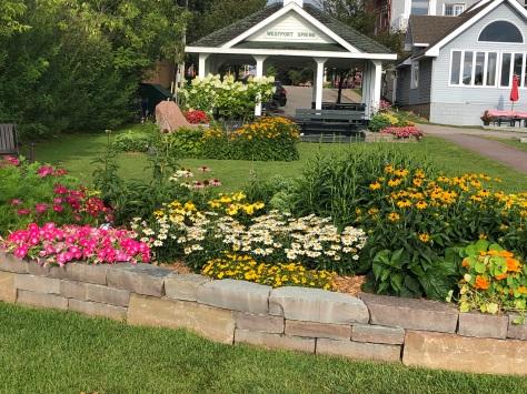 pollinator garden July 27